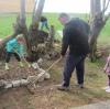 trnovo-pomlad-254