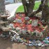 trnovo-pomlad-365