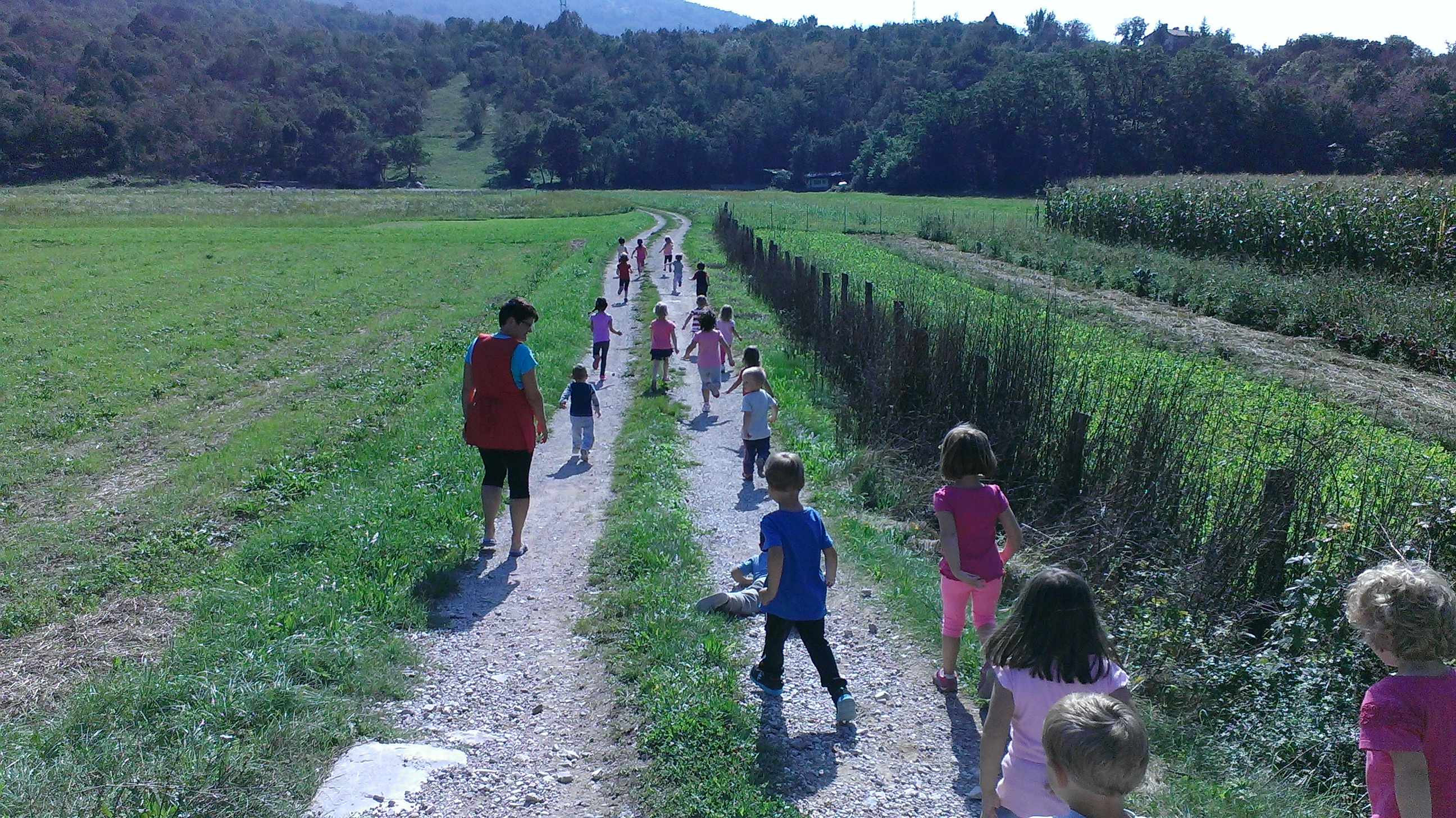 Skupinski sprehod v naravi