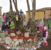 trnovo-pomlad-341